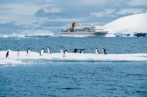 BREMEN_Antarktis_Paulet_Island_Hapag_Lloyd_Kreuzfahrten