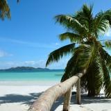 seychellen__karawanereisen_bfs_tanjafaigle