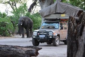 Botswana_Camp_Elefant_und_Auto_BFS_KarawaneReisen_Felix_Faigle