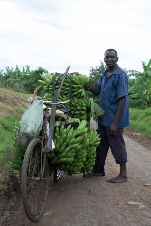 Bananentransport_Karawane_TanjaFaigle