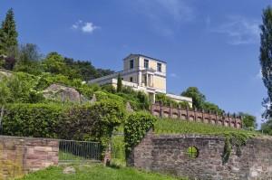 Pompejanum Aschaffenburg mit Weinberg vom Mainufer