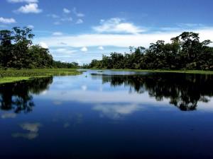 Tortuguero Nationalpark - Bild nur für Ara Tours Reisen verwenden