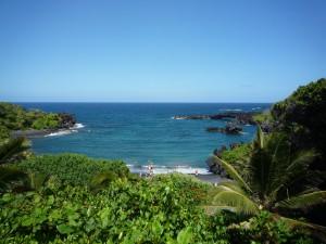hawaii_karawane_bfs