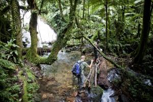 TAG_7_BWINDI_FOREST_TRAIL_c_UgandaTrails